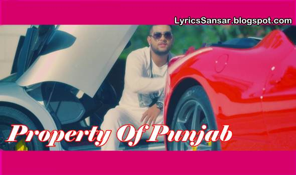 Property Of Punjab