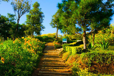 thailand tourism Doi Mae Hua Kham.