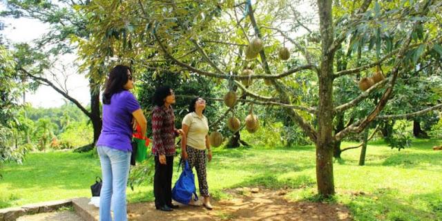 Mau Wisata ke Kota Banjarbaru, Lihat Dulu Daftar Objek Wisata Banjarbaru Update Juni 2016
