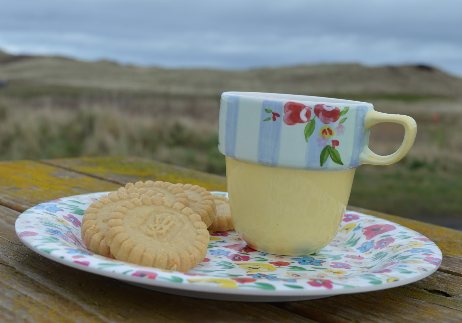 Ringtons tea and biscuits at Warkworth beach