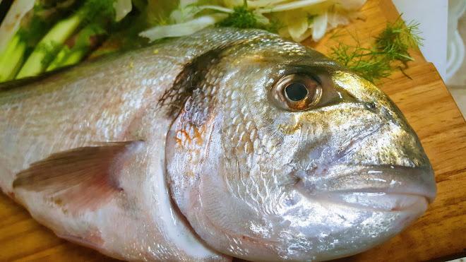 Critères de fraîcheur du poisson et conservation