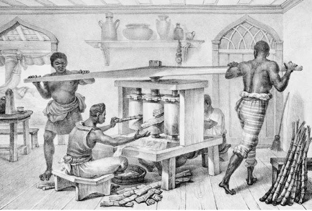Aventura na História | 500 anos da cachaça no Brasil