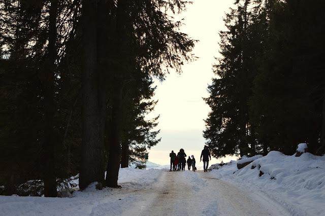 escursioni ciaspole madonna di campiglio