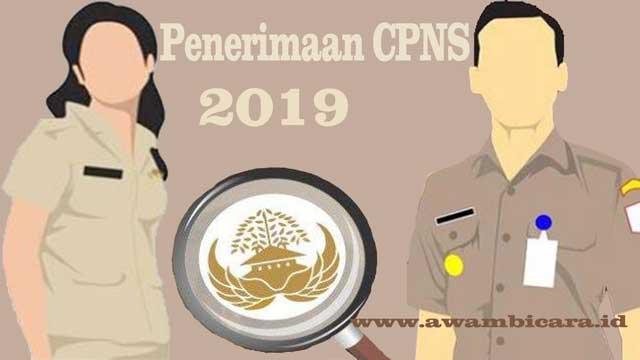 kepastian jadwal pendaftaran dan penerimaan CPNS 2019