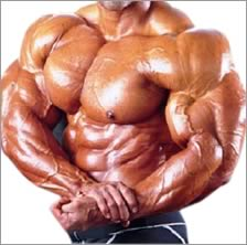 Fast Explorer: Is HGH Better Than Steroids?