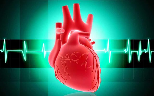 Benarkah Jantung Bisa Berpikir dan Memiliki Perasaan ?