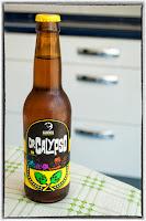 Guineu Dr. Calypso