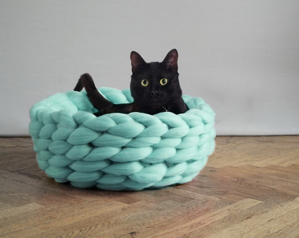 Cute Beds For Pets Combine With Interior Decoration Ideas 15