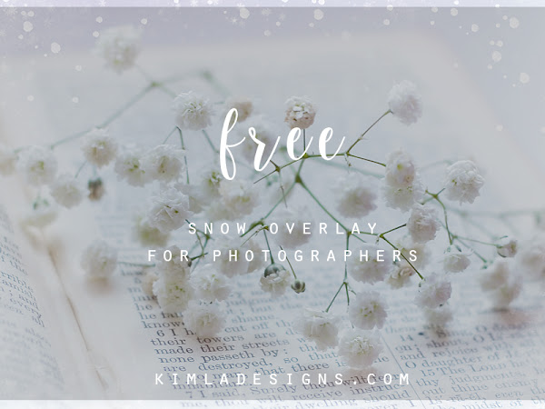 Freebie | Snow Overlay | How to use Photo Overlays ? Free Photoshop Tutorial | kimla designs | photography designs