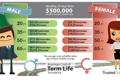 Different Types of Life insurance: Term vs Whole Life Insurance
