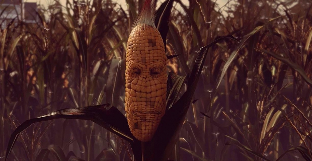 Maize Xbox