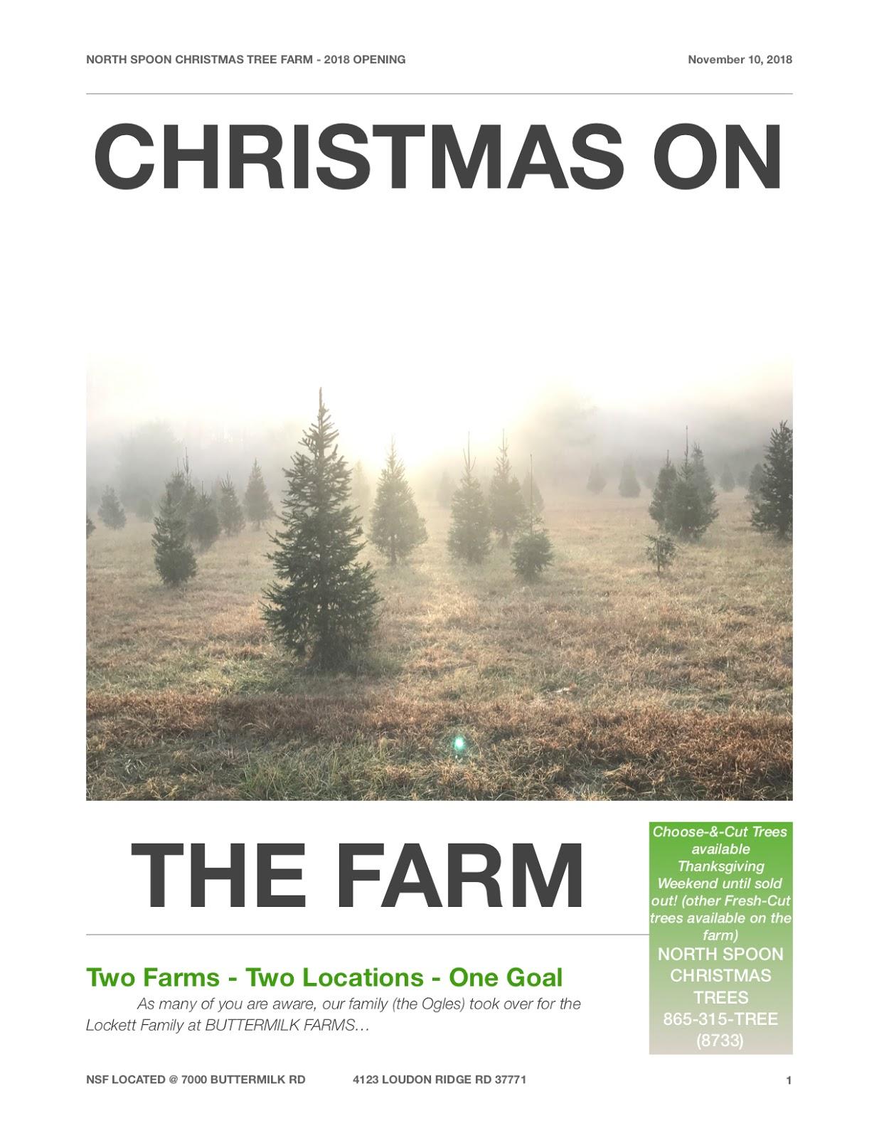 The North Spoon - Christmas Tree Farm