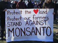 farmers v Monsanto GMO monopoly