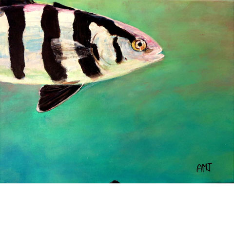 Rudderfish- Original painting