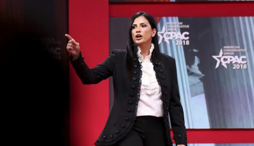 Loesch takes starring role for NRA