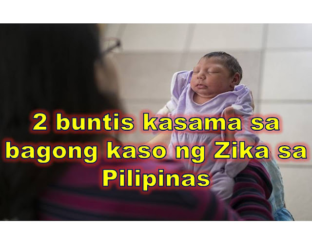"The latest reported victim of Zika virus in the Philippines is a 16-year old pregnant girl from Las Piñas City.    There are 33 cases of Zika according to Department of Health, which includes two pregnant women.    The first pregnant women who contacted Zika is from Cebu and she is due to give birth on January. She has already undergone two ultrasound and so far, no abnormalities were seen in her pregnancy.   ""She's okay, she's still being monitored. She has undergone two ultrasound and so far, still normal. She's expected to give birth in January,"" DOH Secretary Paulyn Ubial said.  The 16-year old pregnant girl from Las Pinas who contacted Zika is on her 32nd week. Some of the symptoms she suffered are rashes and fever. No ultrasound test has been done yet to know of the safety of her baby.   ""@Dok_Pau confirms second pregnant #Zika; 16 year old from Las Pinas City; had skin rash & fever at 32nd week of her pregnancy; No ultrasound,"" DOH spokesperson Dr. Eric Tayag said in his Twitter account. ""Total number of #zika in #ph is 33 including 2 pregnant cases (Cebu & Las Pinas),"" he added. The latest reported victim of Zika virus in the Philippines is a 16-year old pregnant girl from Las Piñas City. There are 33 cases of Zika according to Department of Health, which includes two pregnant women.   The first pregnant women who contacted Zika is from Cebu and she is due to give birth on January. She has already undergone two ultrasound and so far, no abnormalities were seen in her pregnancy.   ""She's okay, she's still being monitored. She has undergone two ultrasound and so far, still normal. She's expected to give birth in January,"" DOH Secretary Paulyn Ubial said.  The 16-year old pregnant girl from Las Pinas who contacted Zika is on her 32nd week. Some of the symptoms she suffered are rashes and fever. No ultrasound test has been done yet to know of the safety of her baby.   ""@Dok_Pau confirms second pregnant #Zika; 16 year old from Las Pinas City; had skin rash & fever at 32nd week of her pregnancy; No ultrasound,"" DOH spokesperson Dr. Eric Tayag said in his Twitter account. ""Total number of #zika in #ph is 33 including 2 pregnant cases (Cebu & Las Pinas),"" he added.    What Do You Need To Know About Zika?  There are total of 33 cases of Zika in Philippines, of these: 12- are from Ilo-ilo;  4- from Bacoor Cavite;  3-  from Mandaluyong;   3- from Calamba, Laguna  includes a 7-year-old girl and a 13-year-old boy from Calamba, Laguna 2-  from Antipolo;  2- Las Pinas;  2-  Muntinlupa;  1- Cebu;  1- Quezon City;  1-  Makati; a 27-year-old woman from Makati City 1- Caloocan; a 31-year-old man from Caloocan 1- Manila a 25-year-old woman from Sta. Cruz, Manila What is Zika? Zika virus is mostly transmitted through mosquito bites particularly of Aedes Eagypti, the same mosquito that carries dengue.   This virus has already been declared as global health emergency by World Health Organization (WHO) because of its link to microcephaly.   Microcephaly is a condition where a baby is born with unusually small head and underdeveloped brain.   Aside from mosquito bites, the virus can also be transmitted sexually. DOH reminds couples to practise safe sex even for pregnant women to avoid infection.       What are the symptoms of Zika?  Deaths are rare and only one-in-five people infected is thought to develop symptoms.  These includes:  mild fever  conjunctivitis (red, sore eyes)  headache  joint pain   rashes  The DOH has also set up 24/7 Zika virus hotlines. These are (02) 711-1001 and (02) 711-1002.      What Do You Need To Know About Zika?  There are total of 33 cases of Zika in Philippines, of these: 12- are from Ilo-ilo;  4- from Bacoor Cavite;  3-  from Mandaluyong;   3- from Calamba, Laguna  (includes a 7-year-old girl and a 13-year-old boy from Calamba, Laguna) 2-  from Antipolo;  2- Las Pinas;  2-  Muntinlupa;  1- Cebu;  1- Quezon City;  1-  Makati; (a 27-year-old woman)  1- Caloocan; (a 31-year-old man)  1- Manila (a 25-year-old woman from Sta. Cruz, Manila)   What is Zika? Zika virus is mostly transmitted through mosquito bites particularly of Aedes Eagypti, the same mosquito that carries dengue.   This virus has already been declared as global health emergency by World Health Organization (WHO) because of its link to microcephaly.   Microcephaly is a condition where a baby is born with unusually small head and underdeveloped brain.   Aside from mosquito bites, the virus can also be transmitted sexually. DOH reminds couples to practise safe sex even for pregnant women to avoid infection.       What are the symptoms of Zika?  Deaths are rare and only one-in-five people infected is thought to develop symptoms.  These includes:  mild fever  conjunctivitis (red, sore eyes)  headache  joint pain   rashes  The DOH has also set up 24/7 Zika virus hotlines. These are (02) 711-1001 and (02) 711-1002.   ©2016 THOUGHTSKOTO"