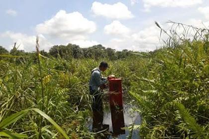 Tips berpindah dari surveyor kebun menjadi surveyor konstruksi