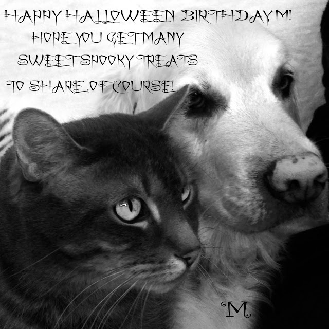 happy halloween birthday m - Happy Halloween Birthday