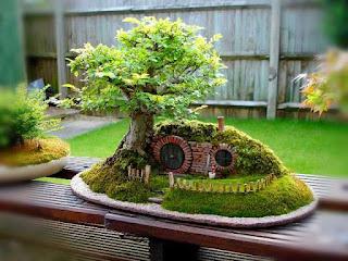 cara-membentuk-tanaman-bonsai.jpg
