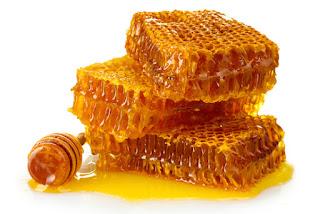 madu sarang, madu sarang lebah, madu sarang jogja, madu sarang murni, madu sarang asli, madu sarang adalah,
