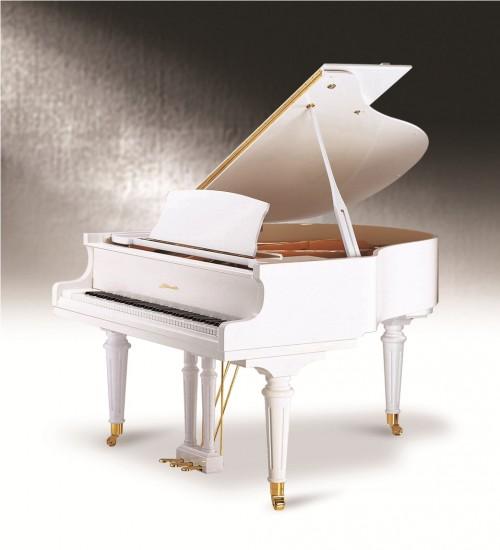 dan Piano Ritmuller 160R1 A112