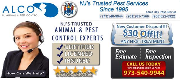 Insect Control In Nj Alco Pest Control