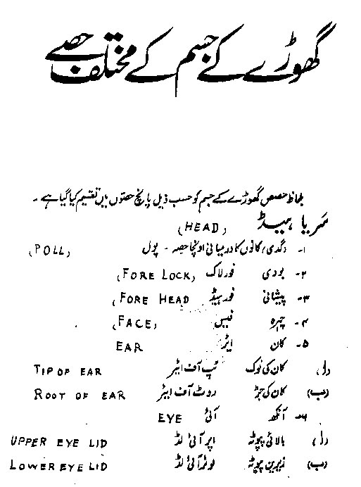 Animal Farm PDF Book in Urdu Umoor e Haiwanat by Muhammad