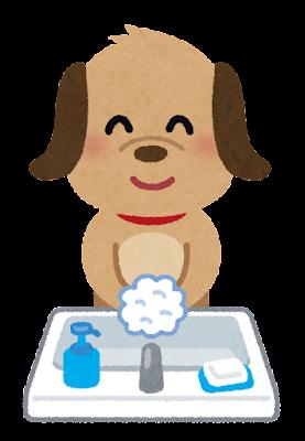手洗いのイラスト(犬)