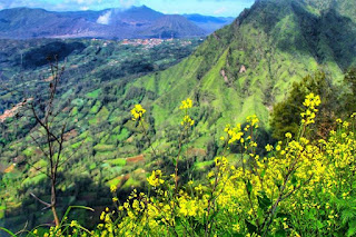 wisata alam di probolinggo