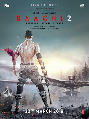 Baaghi 2 2018 Hindi WEB-DL 480p 200Mb HEVC x265