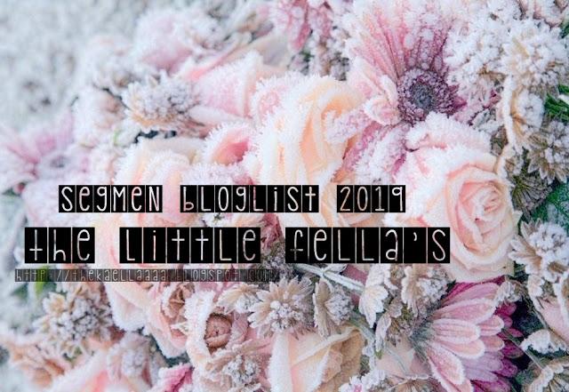 "Segmen Bloglist "" THE LITTLE FELLA'S"""