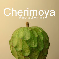 http://kolonihavelivet.blogspot.com.es/2016/03/cherimoya-annona-cherimola.html