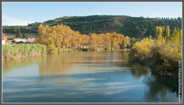 Río Arga a su paso por Puente la Reina