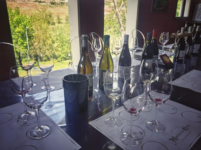 Cata de los Vinos de Cangas del Narcea