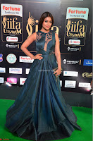 Shriya Saran in Beautiful Transparent Dark Gown IIFA Utsavam Awards 2017 075.JPG