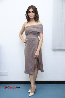 Actress Kriti Kharbanda Stills in Short Dress at Bruce Lee Movie Press Meet Stills  0038.jpg