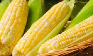 masakan dari jagung manis,cara memasak jagung keju susu,cara memasak jagung manis rebus,cara memasak jagung manis pipilan,cara memasak jagung popcorn manis,cara memasak jagung hitam,