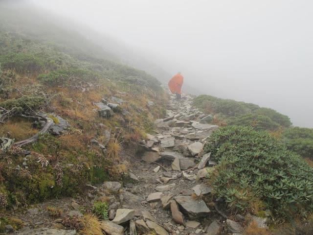 IMG 5964 - 台中登山│台灣第二高峰,雪山主峰、東峰兩天一夜攻頂!這兩天是我最難熬的一夜
