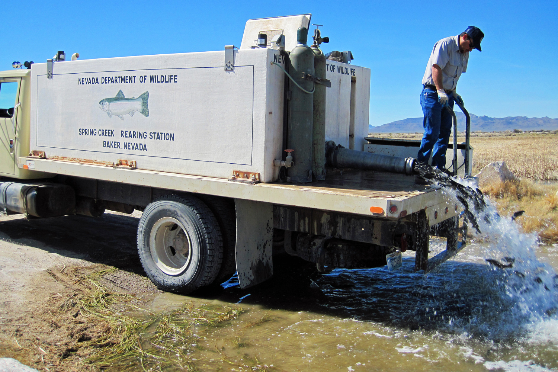 Fisherdad Haymeadow Reservoir Nye County Nevada
