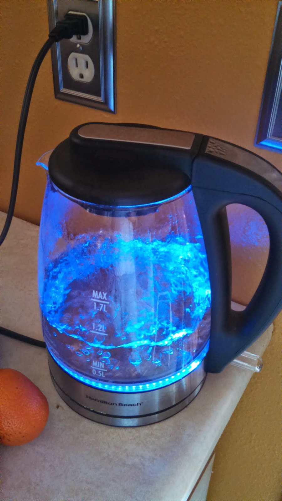 Boiling Water for Tea in Hamilton Beach Electric Tea Kettle