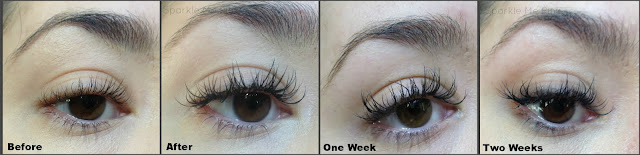 Eye Lash Extensions Review and Info | Lash Out Arizona