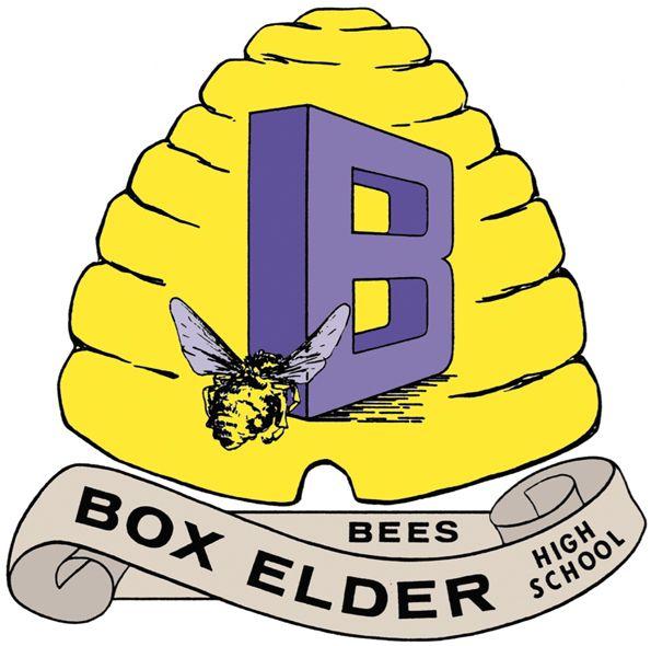 Box High Elder Bee School