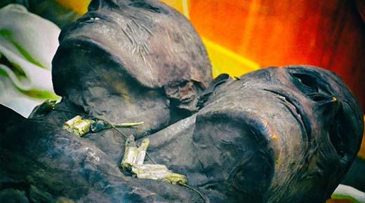 Kap Dwa: El gigante de 3.5 metros de altura con dos cabezas de la Patagonia