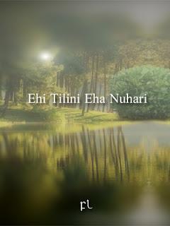 Ehi Tilini Eha Nuhari Cover