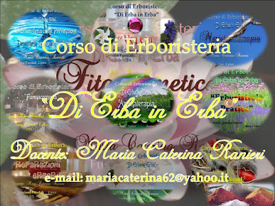 ©dierbainerba.blogspot.it – Maria Caterina Ranieri – all rights reserved