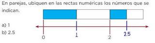 ubicar puntos en rectas numericas con fracciones y números decimales Desafíos matemáticos sexto contestado