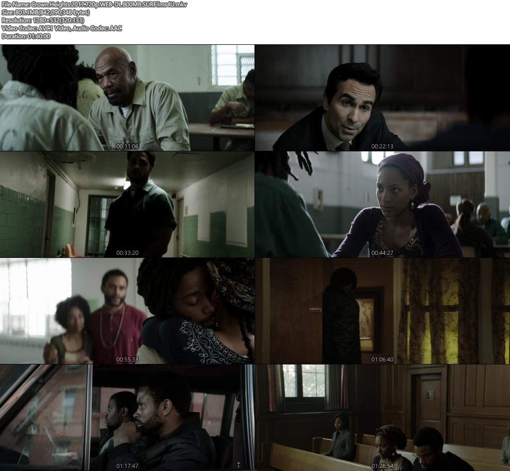Crown Heights 2017 720p 800MB WEB-DL Screenshot