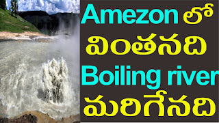 Boiling river amazon forest