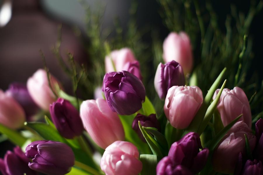 Blog + Fotografie by it's me! - fim.works - Bouquet lila- & rosafarbener Tulpen