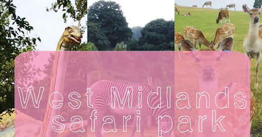 Family Time | West Midlands Safari Park